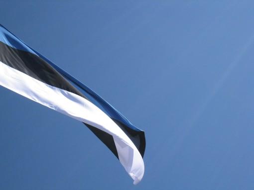 Sinine-must-valge